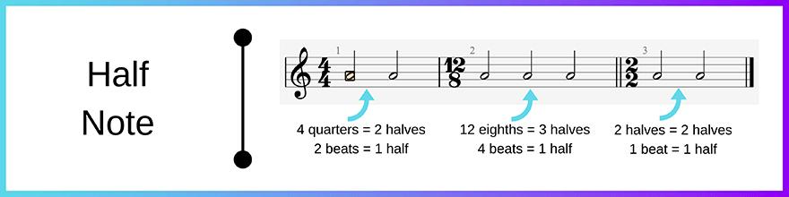 Half note - minim